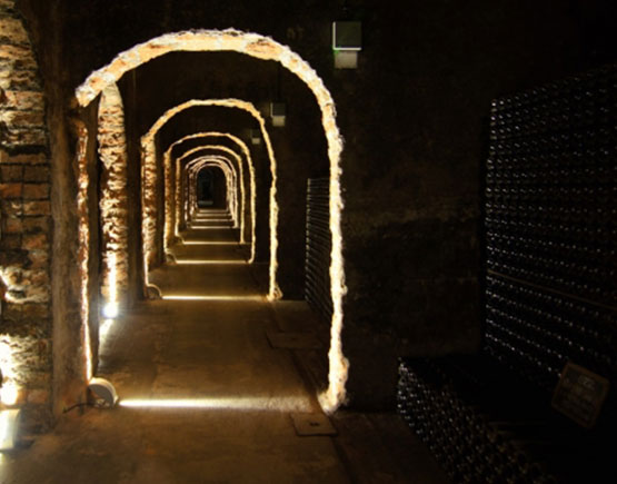 cellars messias port