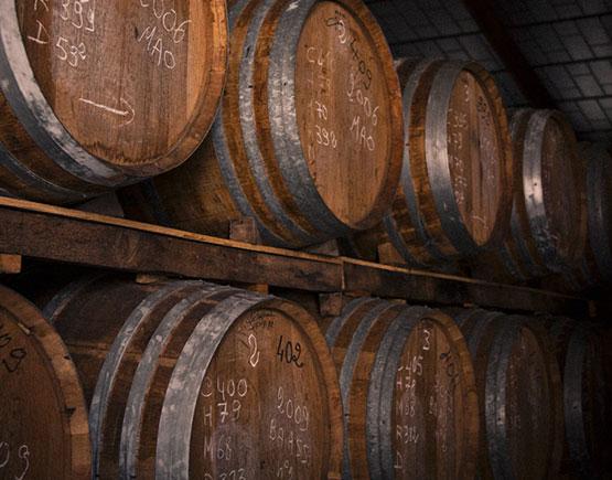 Armagnac-Marquis-de-Montesquiou-cellar-barels