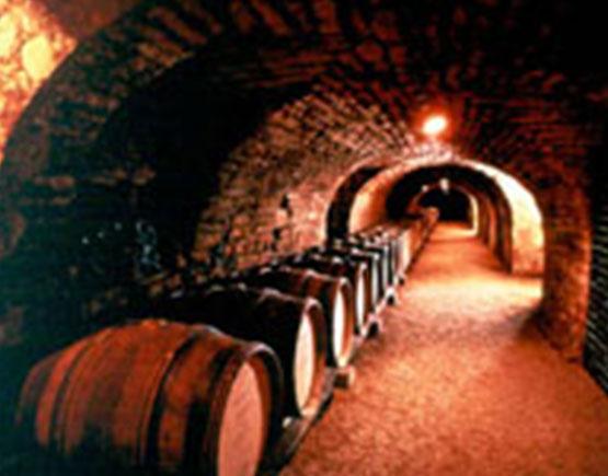 Armagnac-saint-vivant-de-la-salle-cellar