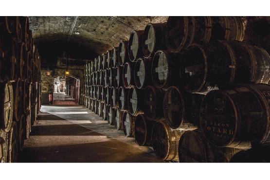 Château de Cognac cellars