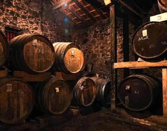 Armagnac-Chateau-de-briat-cellar-barrels