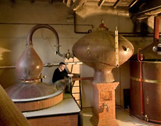 pierre Ferrand distillery