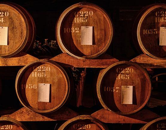 Armagnac-Jean-Cave-barrels