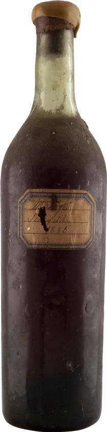 Malaga 1886 Scheyell (2271)